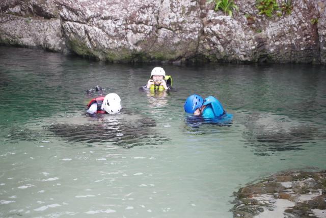 川の中を覗くと魚がいたり【屋久島沢登りツアー】