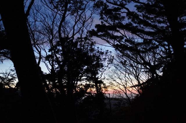 縄文杉コース、高塚小屋のトワイライト