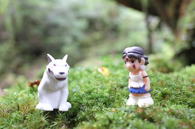 屋久島白谷雲水峡でもののけ姫遊び