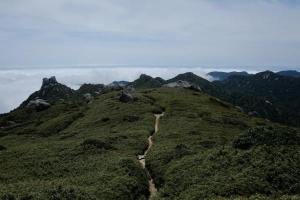 屋久島の山岳風景
