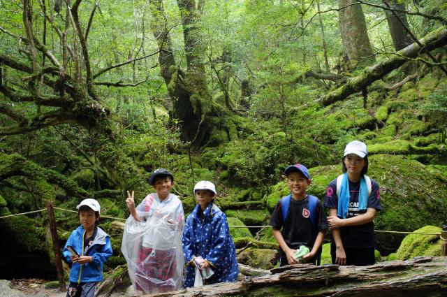 屋久島白谷雲水峡苔むす森