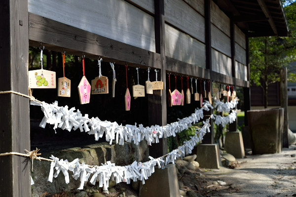 屋久島益救神社の絵馬
