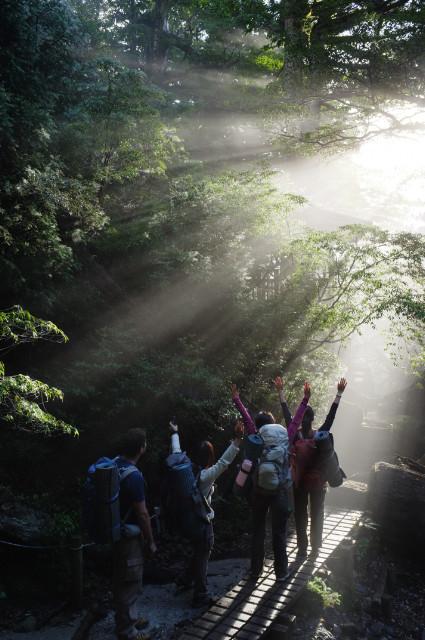 朝の縄文杉近くのご来光