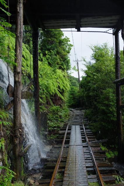 縄文杉コースの風景