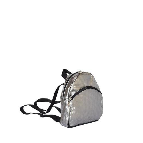 Omega Mini Silver