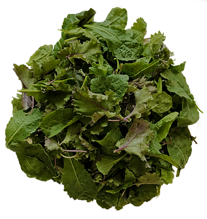 Baby Mix Kale.png