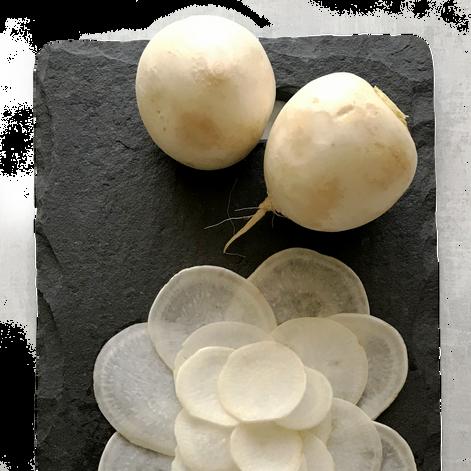 Tokyo Turnips (Large)