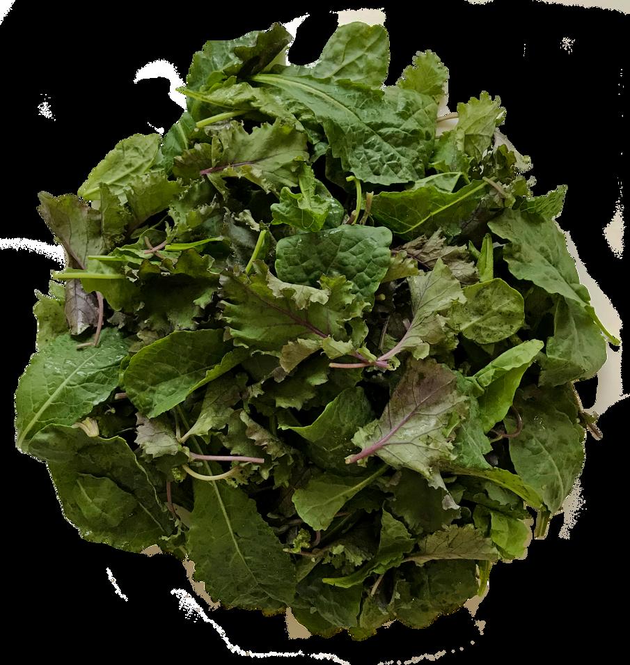 Baby Mix Kale Salad