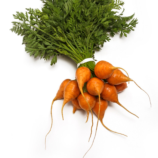 Baby Round Carrots