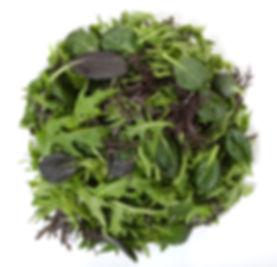 Asian Salad.jpg