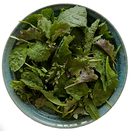 Baby Mix Kale 2.png
