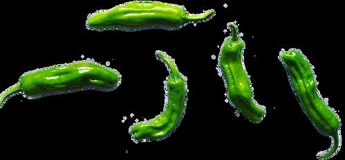 Shishito Peppers.png