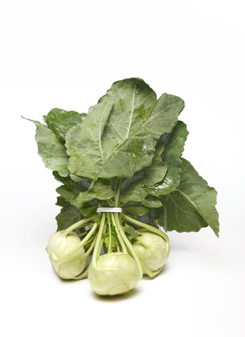 Medium Green Kohlrabi