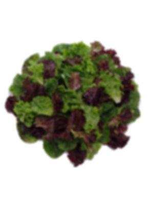 Sweet Mix Salad.jpg