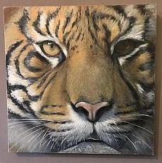 Tiger1-fd944d19ee532a39.jpg