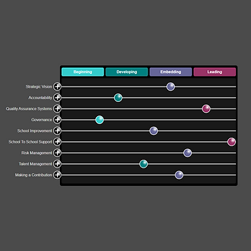 Characteristics of Successful Multi-academy Trusts