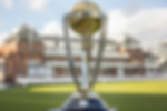 CricketWorldCup-9900000451028a3c.png