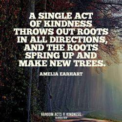 Kindness-9900000451028a3c.jpg