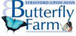 ButterflyStratford-3a2221556f082a07.jpg
