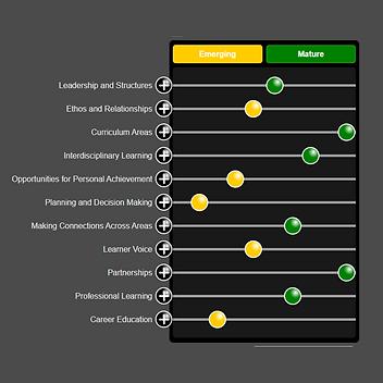 Enterprise Self-Evaluation and Improvement Plan