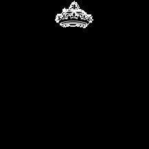 logo full (1).png