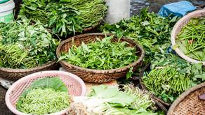 5 Fundamental herbs for wellness