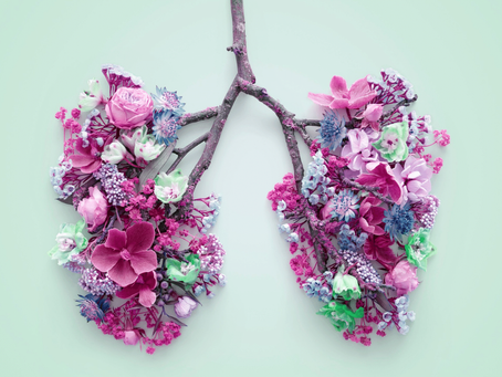 4 Ingredients for healthy lungs - Breathe better at home