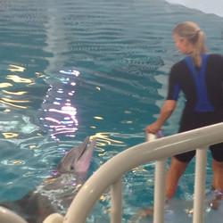 24-Trainer & Dolphin.JPG