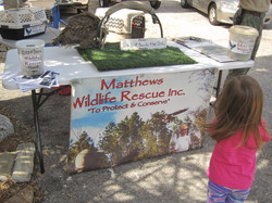31-Wildlife Rescue.JPG