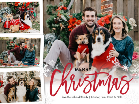 Christmas Holiday Card Photos 2020