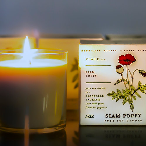 siam poppy - black and red currants, citrus