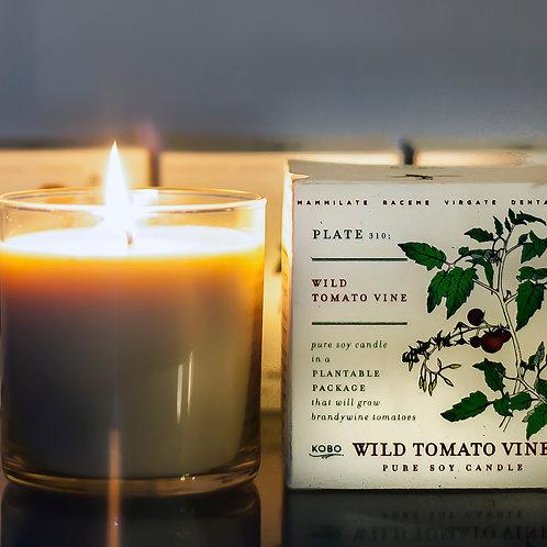 wild tomato vine - ripe tomato,wild clover, greens