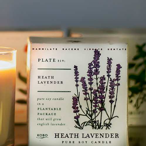 heath lavender - pure levender