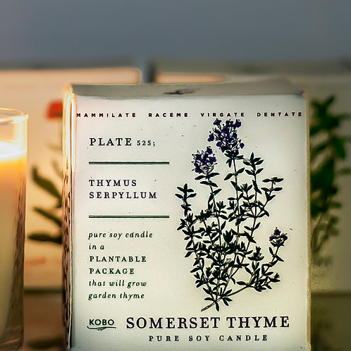 somerset thyme - thyme, sage, lemon leaf