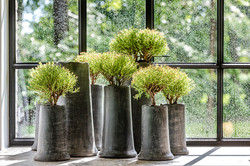 stone vases from Belgium