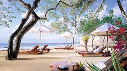 sun loungers - resort furniture