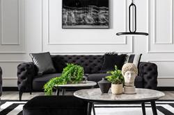 modern classic floransa sofa