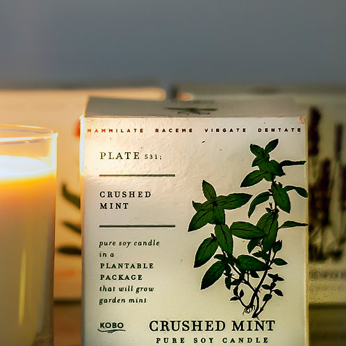 crushed mint - spearmint, peppermint, cedarwood
