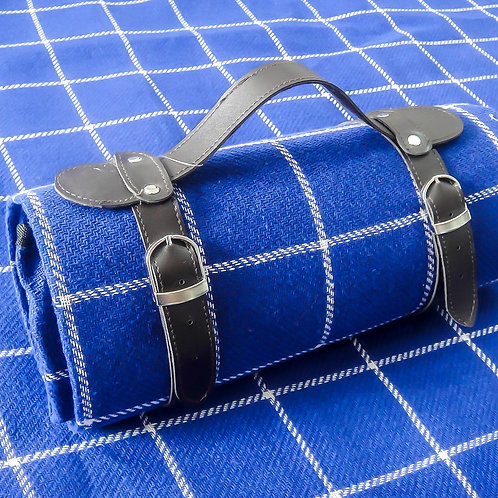 picnic blanket - blue and white stripes
