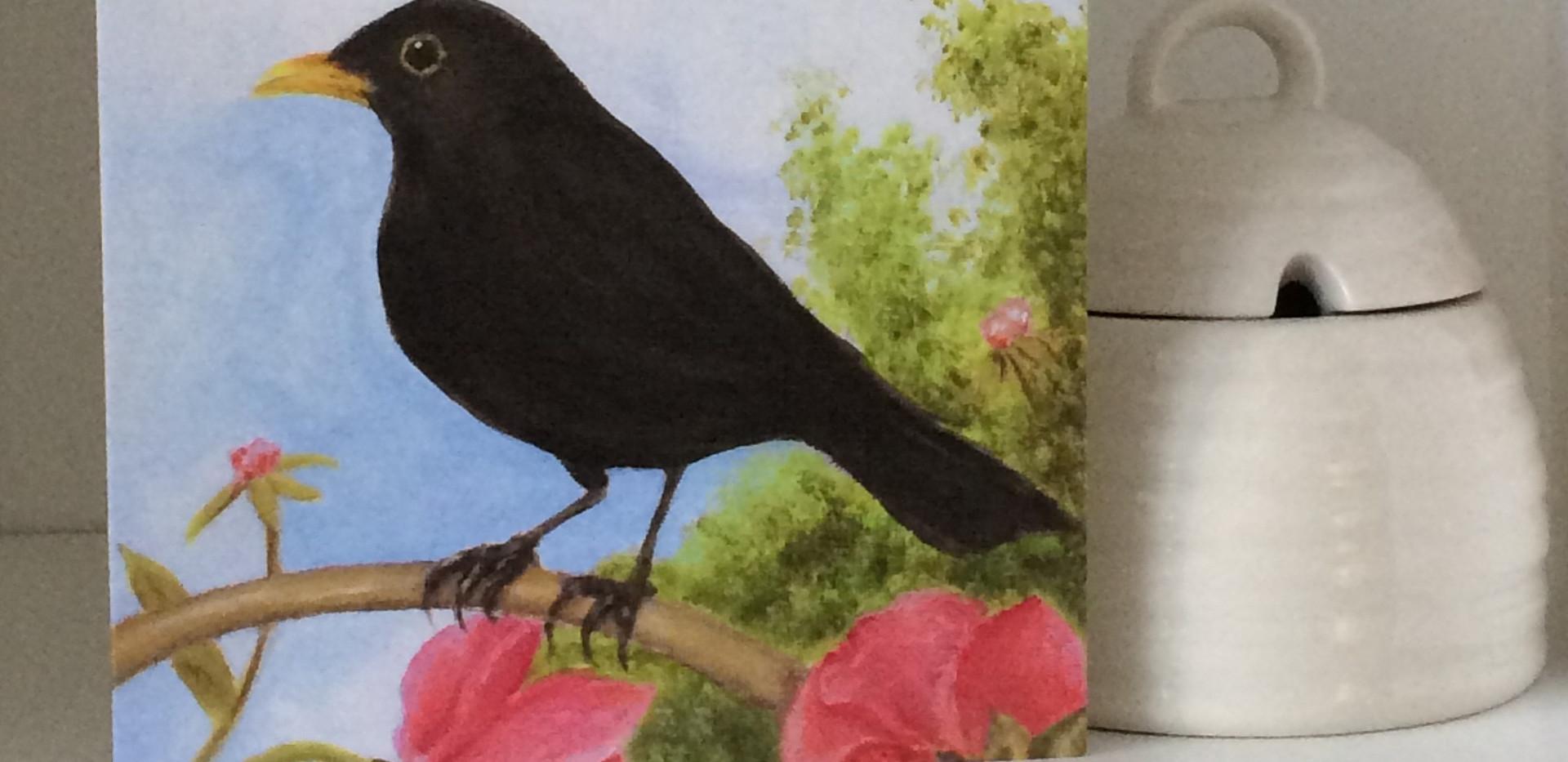 little black bird.jpg