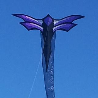 Dragonfly Kite