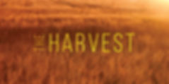 [HAR] - Announcement Banner.jpg
