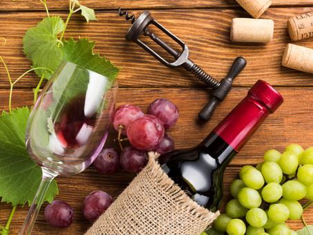 Ruta del vino: viñas para disfrutar del enoturismo en Chile