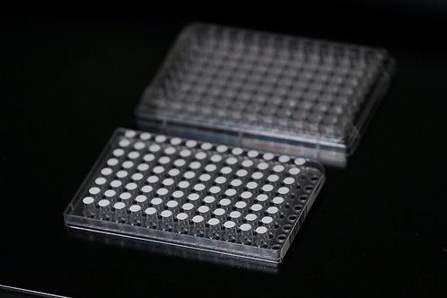 96-Well Corning Transwell Plate with Bio-Spun™ 0.65 I.V. PDLGA Membrane