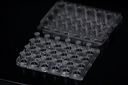 24-Well Corning Transwell Plate with Bio-Spun™ 1.0 I.V. PDLGA Membrane