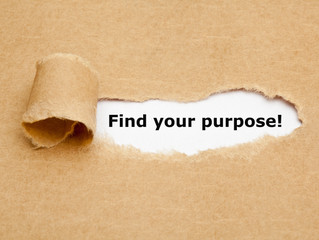 Are you still wondering what your life purpose is?