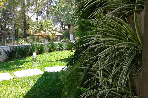 Jardim e parede verde residência LHR - Decora Arquitetura