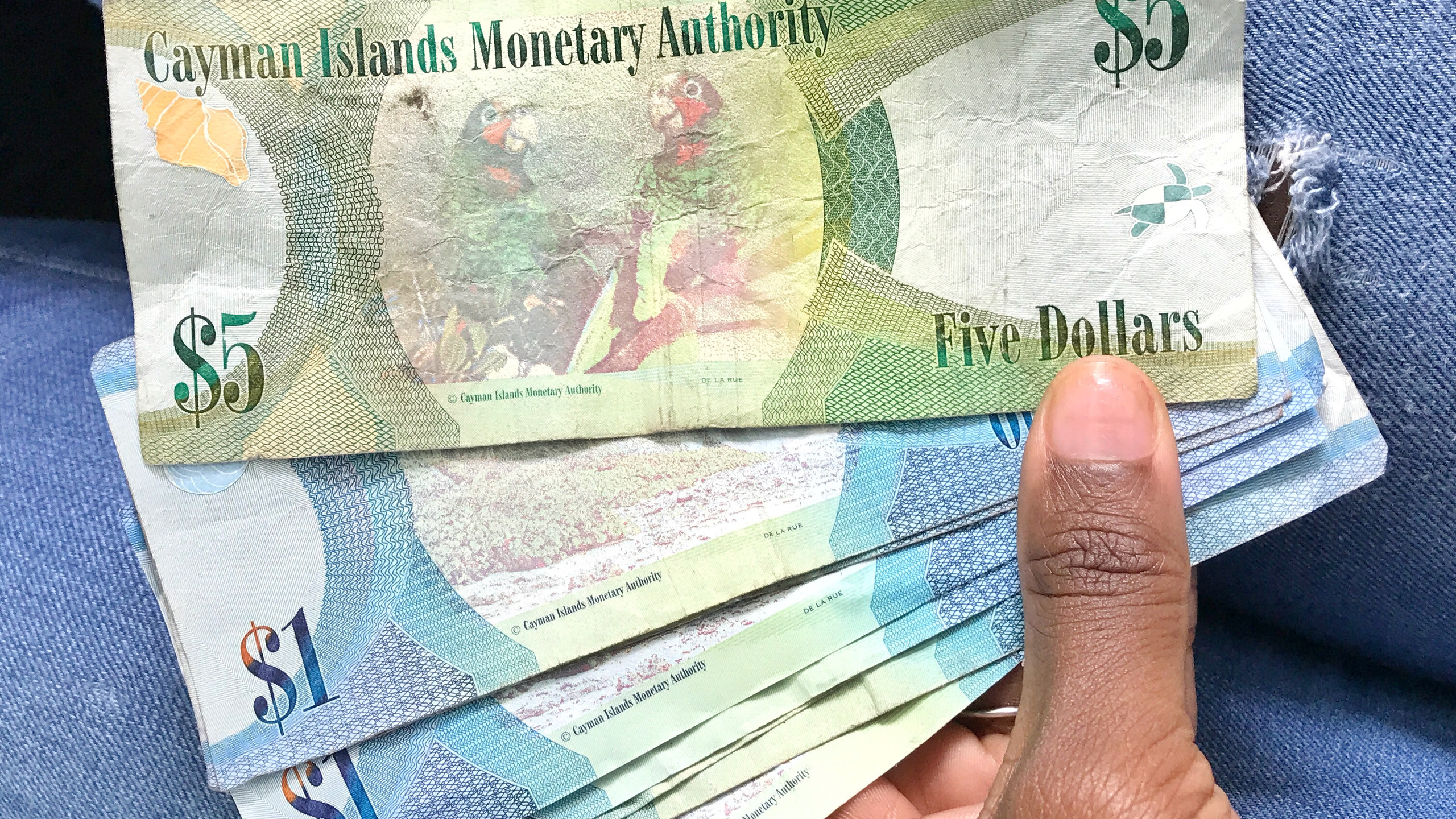Cayman Islands currency.