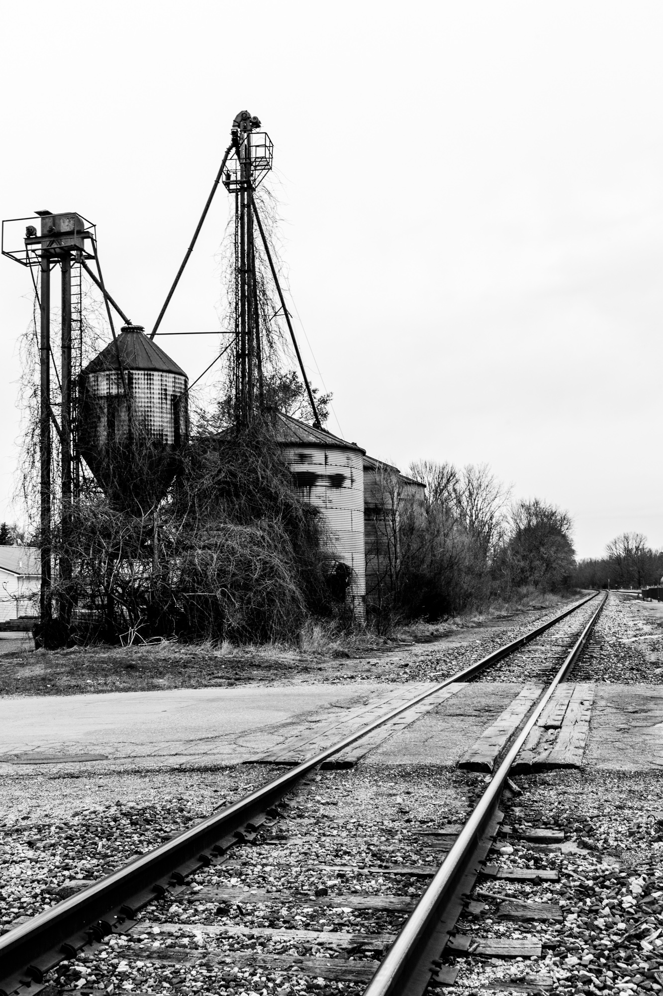 Wayland Tracks-1