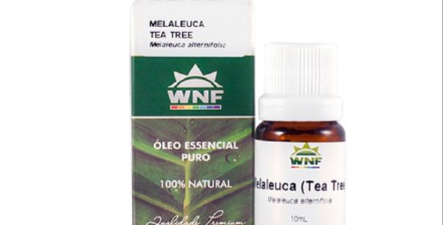Óleo Essencial de Melaleuca  WNF- 5ml